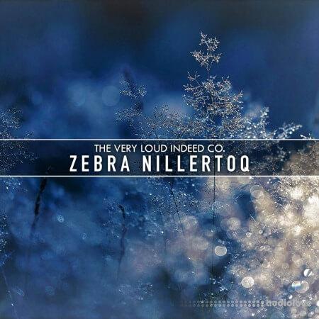 The Very Loud Indeed Co. Zebra Nillertoq