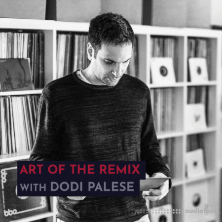 343 Pro Sessions Dodi Palese: Art of The Remix