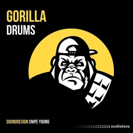Snipe Young Gorilla Drums WAV