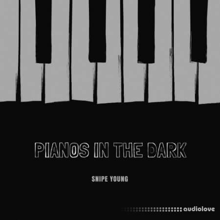 Snipe Young Pianos In The Dark WAV