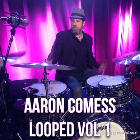 The Loop Loft Aaron Comess Looped Vol.1
