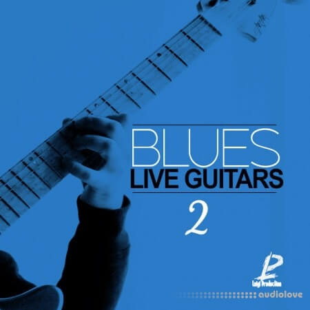 Luigi Production Blues Live Guitars 2 WAV