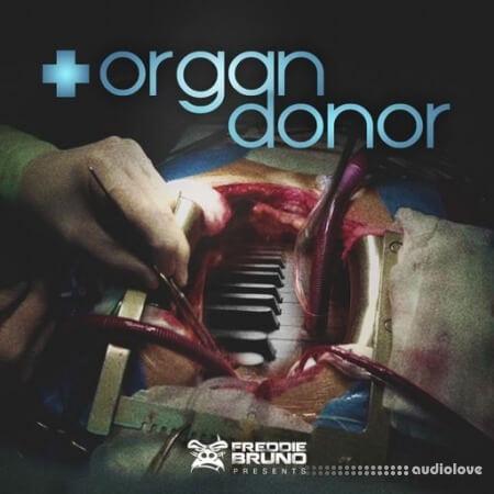 Freddie Bruno Organ Donor