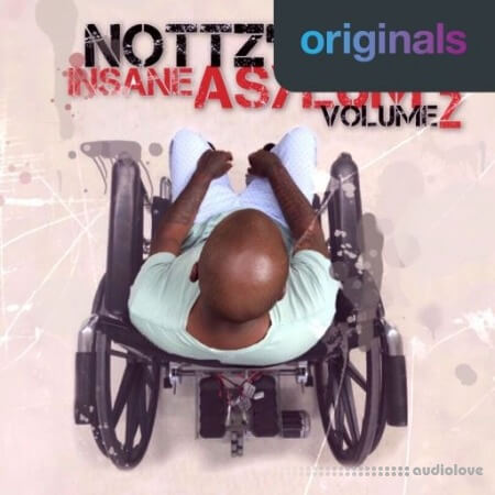 Nottz's Insane Asylum Volume 2