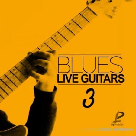 Luigi Production Blues Live Guitars 3