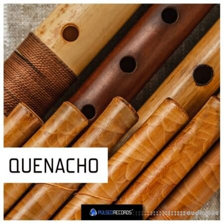 Pulsed Records World Series: Quenacho WAV