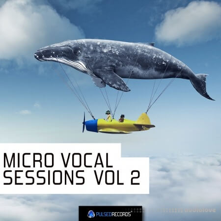 Pulsed Records Micro Vocal Sessions Vol.2