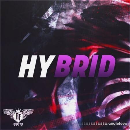 Big Citi Loops Hybrid Hip Hop