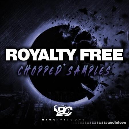 Big Citi Loops Royalty Free Chopped Samples