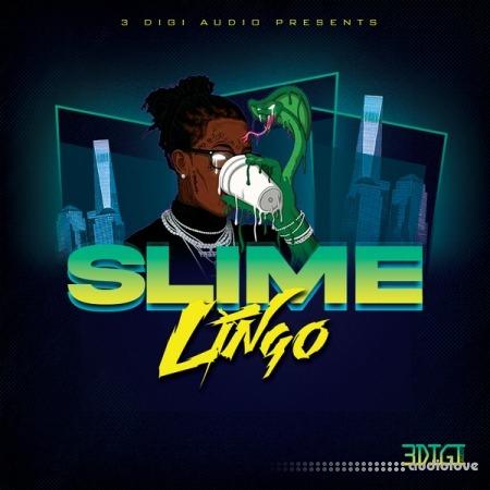 3Digi Audio Slime Lingo