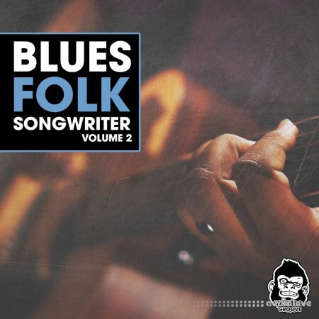 Vanilla Groove Studios Blues Folk Songwriter Vol.2
