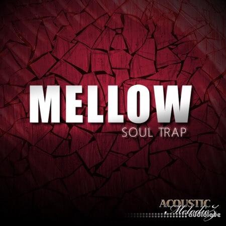 Acoustic Melodiez Mellow Soul Trap
