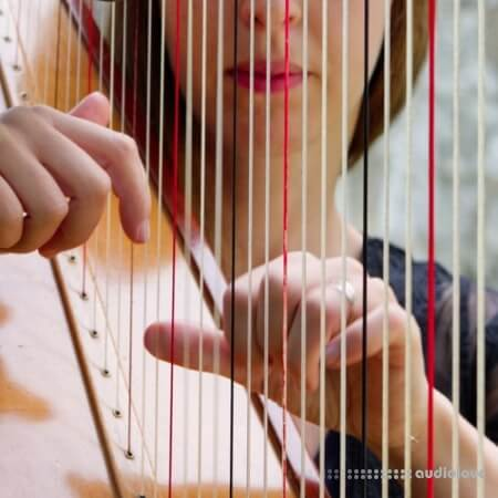 noiiz Harmonious Harps by Aur0ra