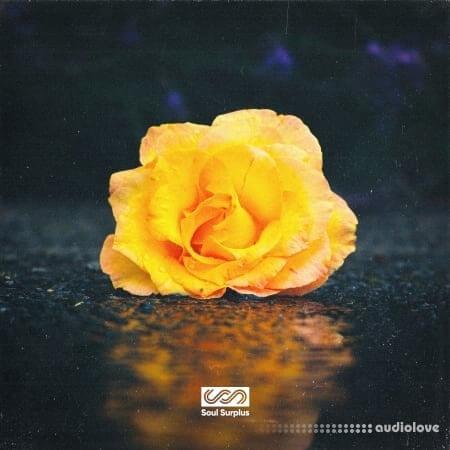 Soul Surplus Astra Hip-Hop Synthesis