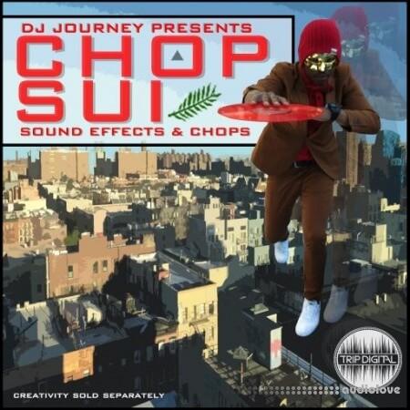 Trip Digital Chop Suey by DJ Journey