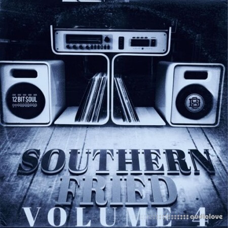 Divided Souls Southern Fried Volume 4