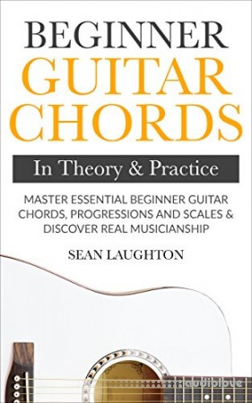 Beginner Guitar Chords In Theory And Practice: Master Essential Beginner Guitar Chords, Progressions And Scales