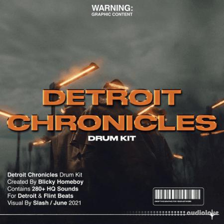 Blicky Homeboy Detroit Chronicles Drumkit WAV Synth Presets