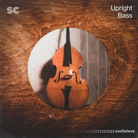 Sonic Collective Upright Bass