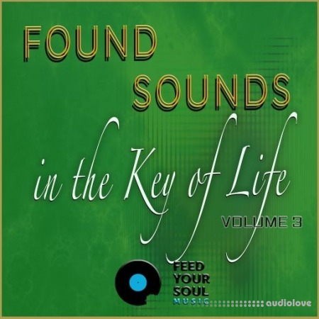 Feed Your Soul Music Found Sounds Vol.3  Sounds in The Key of Life