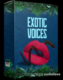 Midilatino Reggaeton Vocal Chops (EXCOTIC VOICES)