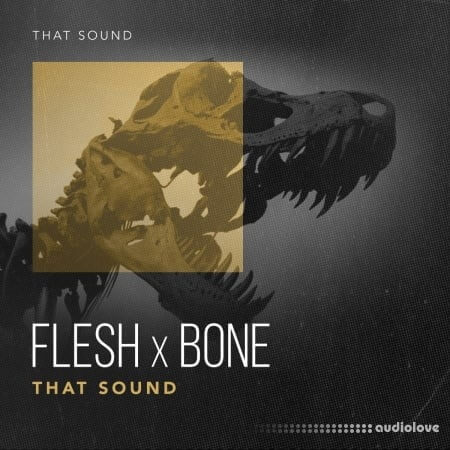 That Sound Flesh X Bone