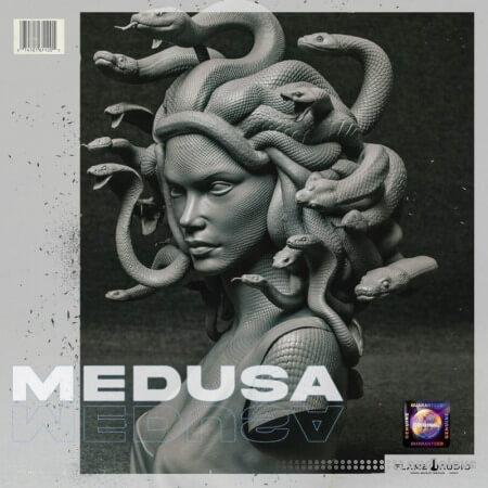 Flame Audio Medusa