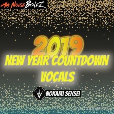 NoiseBonez New Year's Countdown