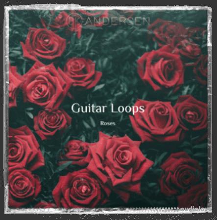 BK Andersen Guitar Loops Roses