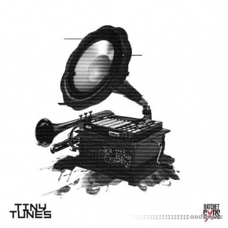 Sound Junkie Tiny Tunes by Sound Junkie