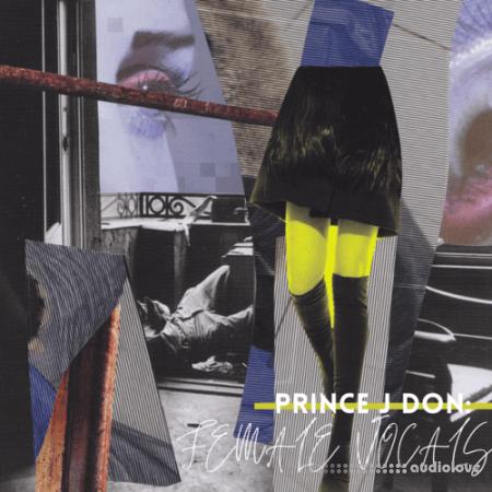 Lazerdisk Prince J Don Presents Ladies First Female Vocals