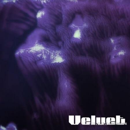 Arteria Velvet