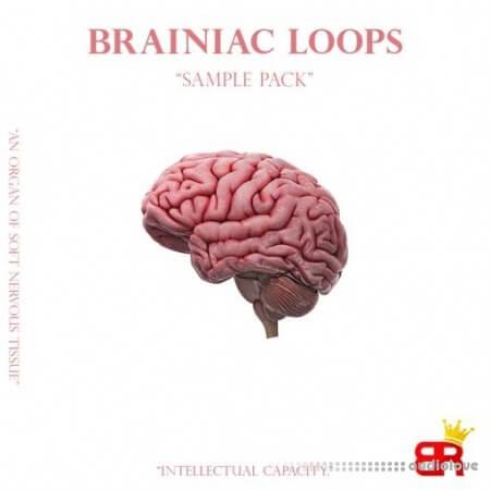 Brown Royal Brainiac Loops
