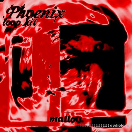 Malloy Phoenix Loopkit