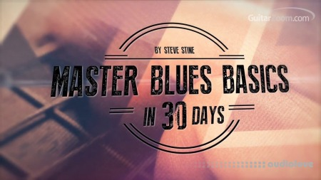 GuitarZoom Master Blues Basics in 30 days with Steve Stine 2016