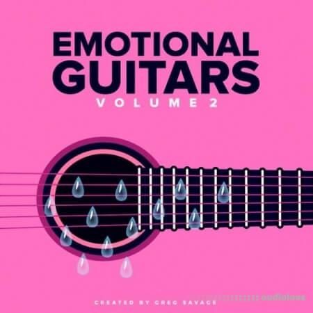 DiyMusicBiz Emotions Guitar SoundPack Vol.2