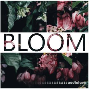 Lamprey Lamprey Bloom Lush Synth Arp