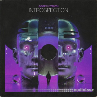Coop The Truth Introspection (Compositions and Stems)