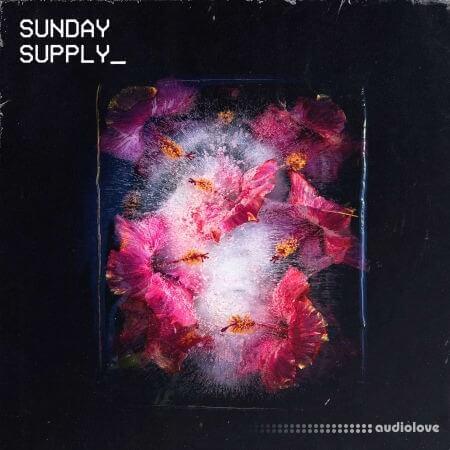 Sunday Supply Frozen Bloom WAV