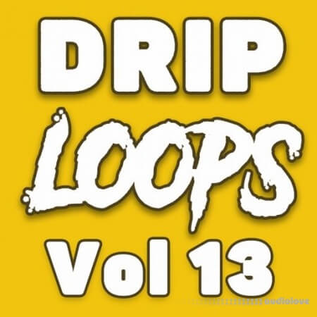 DiyMusicBiz Drip Loops Vol.13 WAV