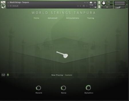 Evolution Series World Strings Tanpura