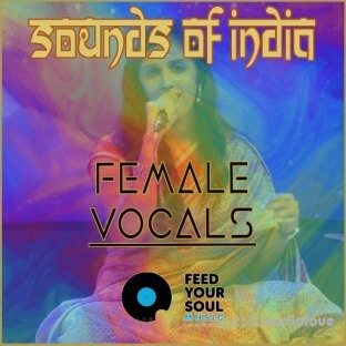 Feed Your Soul Music Sounds Of India Female Vocals