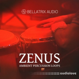 Bellatrix Audio Zenus Ambient Percussion