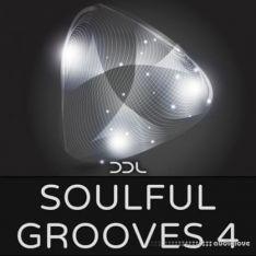 Deep Data Loops Soulful Grooves 4