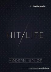 Big Fish Audio Hit Life Modern Hip Hop