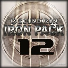 Soundiron Iron Pack 12 Prepared Acoustic Guitar
