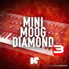 HOOKSHOW Mini Moog Diamond 3