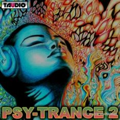 TAUDIO PSY-Trance Vol.2