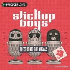 Producer Loops Stick Up Boys Electronic Pop Vocals Vol.2