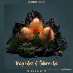 CAPSUN ProAudio Trap Bliss and Future Chill
